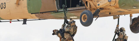 Fostering Special Forces