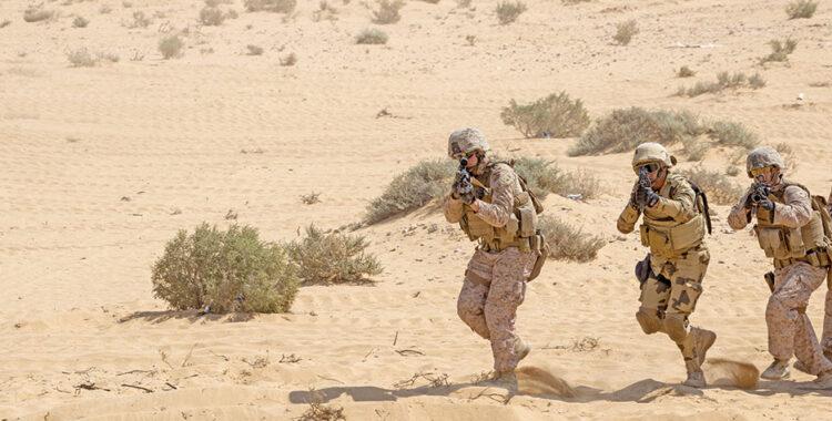 تحديات مكافحة الارهاب في مصر