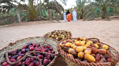 UAE Focuses on Food Security