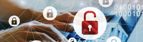 Egypt fights cyber crime