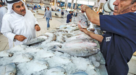 کویت و تقویت  امنیت غذایی منطقوی